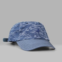 STAPLE PIGEON LINES CAP GREY