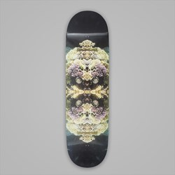 WAYWARD SKATEBOARDS INSECT DECK 8.5
