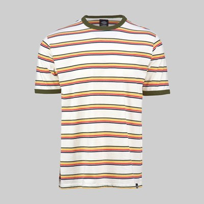 DICKIES NEW PALTZ SS T-SHIRT HEATH GREEN