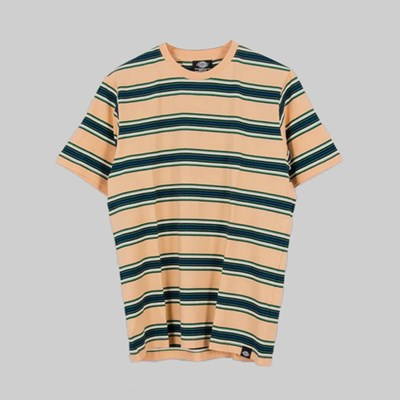 DICKIES LITHIA SPRINGS STRIPE TEE PEACH BRULEE
